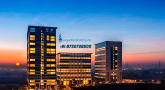 OFFICE SPACE, DLF CORPORATE GREENS on NH 8